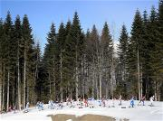 Sochi 2014 Day 17 - Cross Country Men's 50 km Mass Start Free